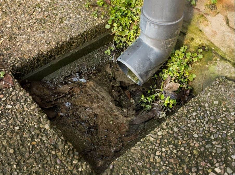 Plumbers vs Drainers. Who do I call to clear my drains?