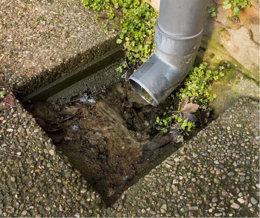 Blocked Drain Pipe Newcastle Plumbing Kings