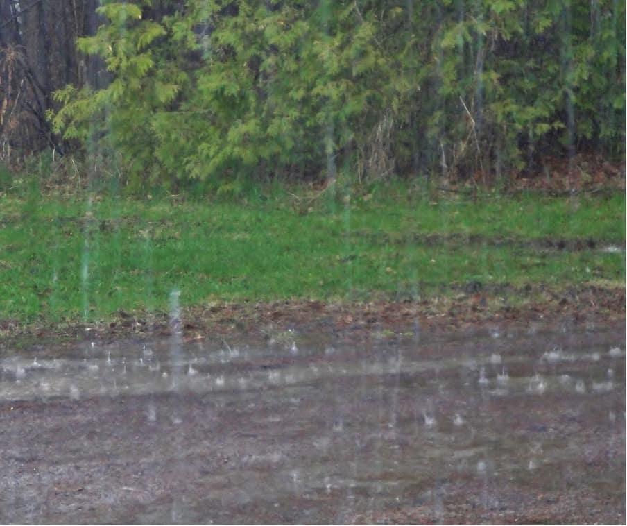 Newcastle Increased Rainfall